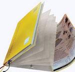 Aufsteck-Fächermappe für Schulplaner A4-Plus mit Eckspann-Gummis